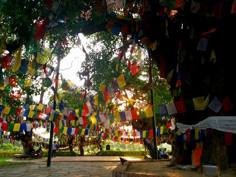 Prayer Flags Lumbini Nepal Julie Jewels Bertrand Vipassana Buddhist Meditation Retreat