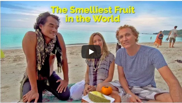 Julie Jewels Bertrand of Shine Your Light, Kom Thongtan of Green Leaf Cafe, Jim Kellett from Living Overseas.TV eating Durian Fruit, the smelliest Fruit in the world on Zen Beach in Koh Phangan, Thailand.